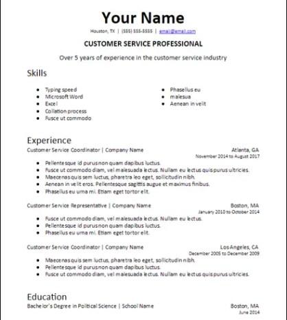 Job Specific Professional Summary Google Docs Resume Description
