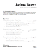 chronological_long_professional_summary_resume_template
