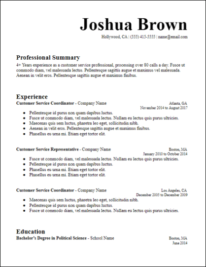 Long Professional Summary Resume Chronological Template