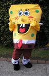 yellow-sponge