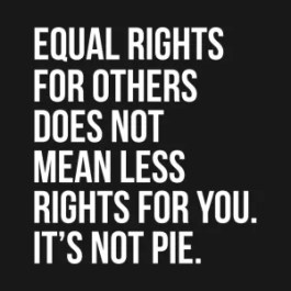 equal rights is not pie