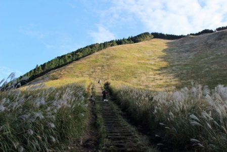 亀山峠へと登る山道の写真