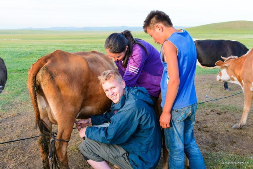 乳搾り モンゴル