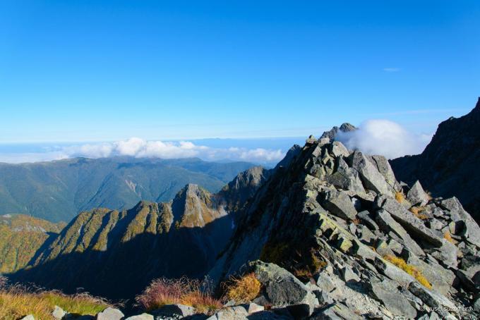 涸沢岳から見る3110mの世界!