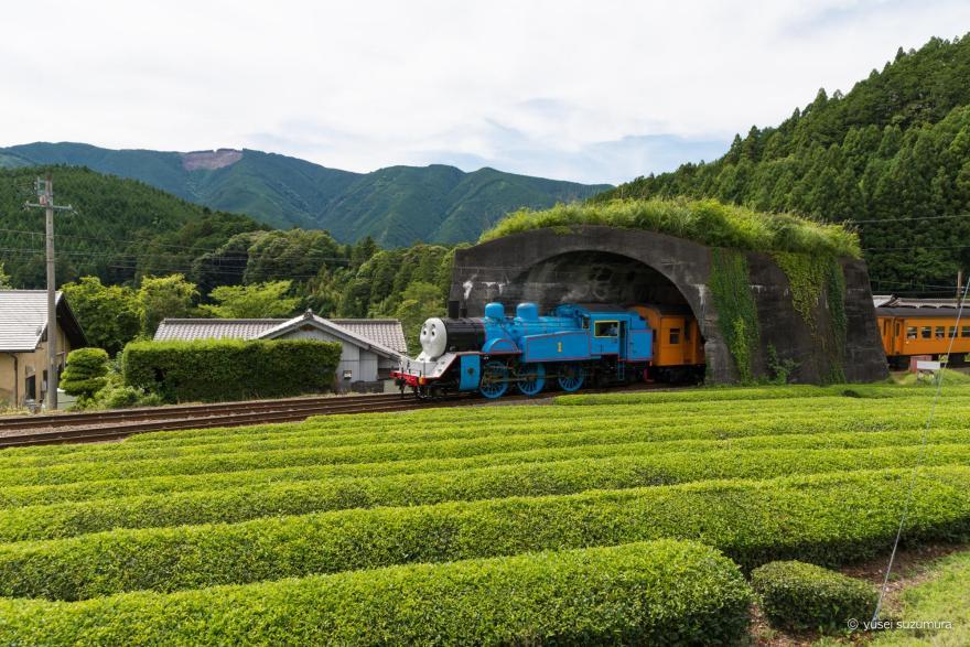 大井川鐵道 トーマス