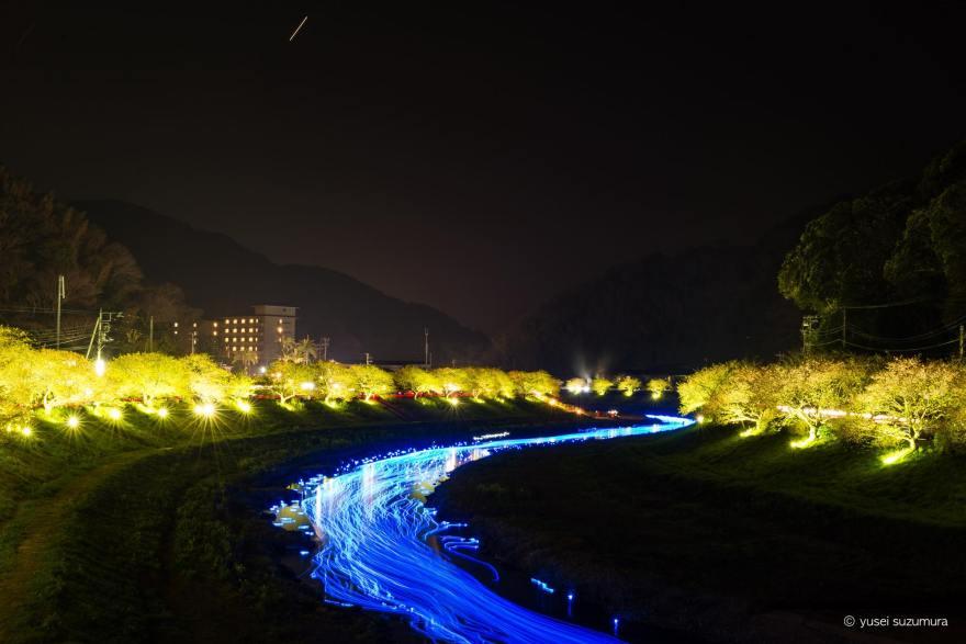 夜桜☆流れ星 みなみの桜
