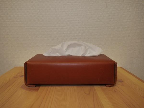 Hiroyaki leather tissue001