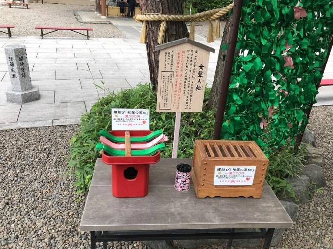 櫻木神社女聲人松