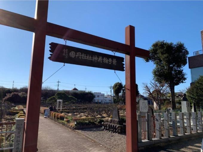 箭弓稲荷神社ぼたん園入り口