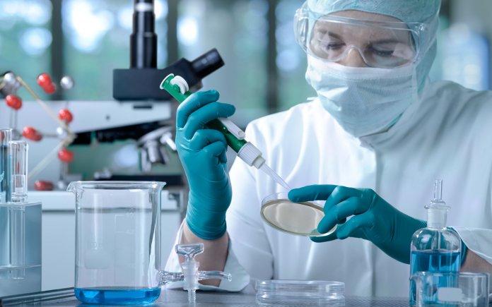 Kök Hücre İşleme Laboratuvarı