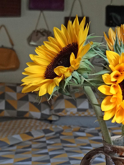 Detail of a sunflower with new bed linen & bedding from Asda Home in the background