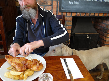Justin eating fish & chips with Fudge looking on intently