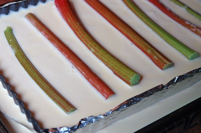 Sticks of rhubarb in custard