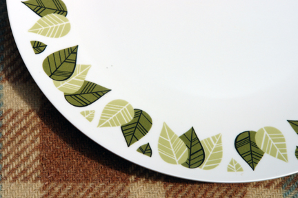 detail from vintage green patterned melamine plate
