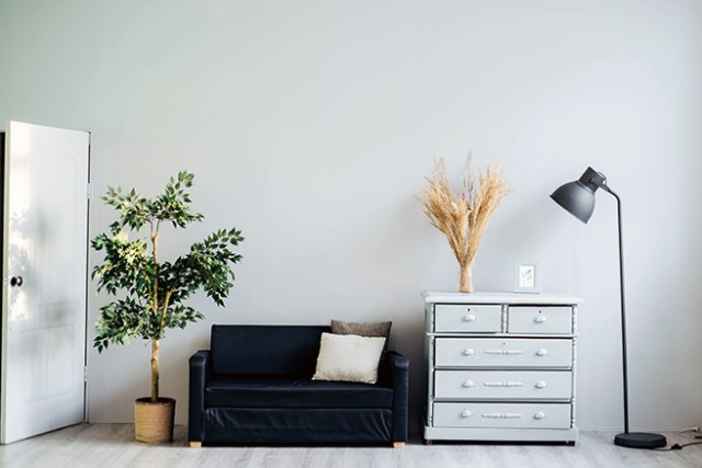 Sofa, pot plant, chest of drawers and tall floor lamp