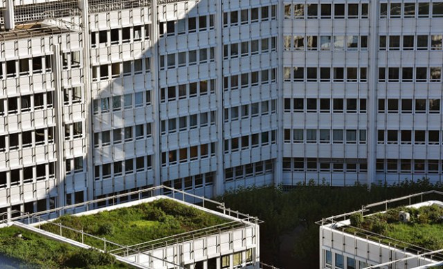 Green roofs on urban multi-storey buildings