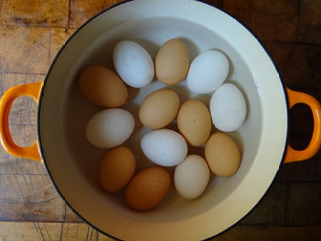 Boiled eggs in a saucepan