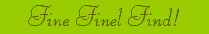 'Fine Finel Find!' blog post banner