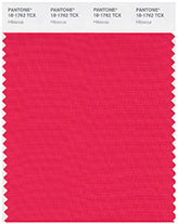 Swatch of Pantone's 'Hibiscus'