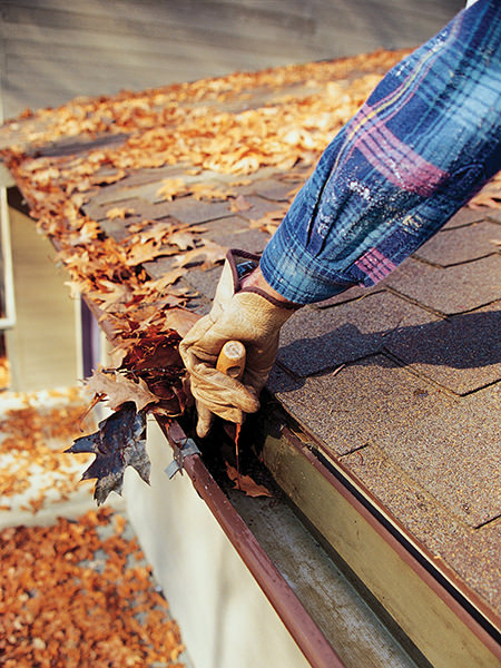 clearing fallen leaves from roof guttering