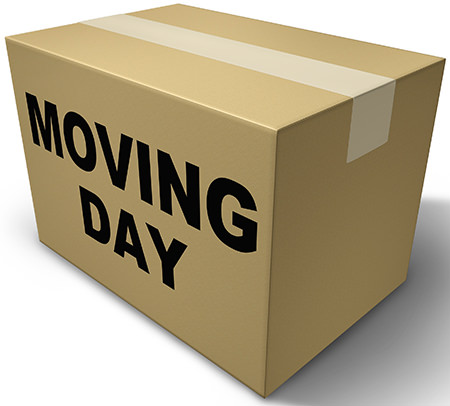 moving day cardboard box illustration