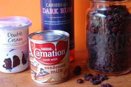 no churn rum & raisin ice cream ingredients