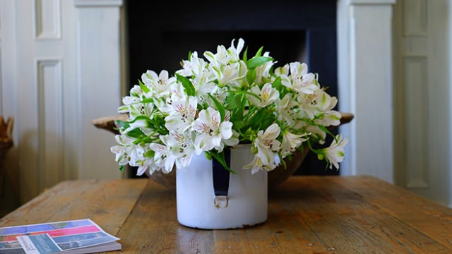 Jug of flowers on a table