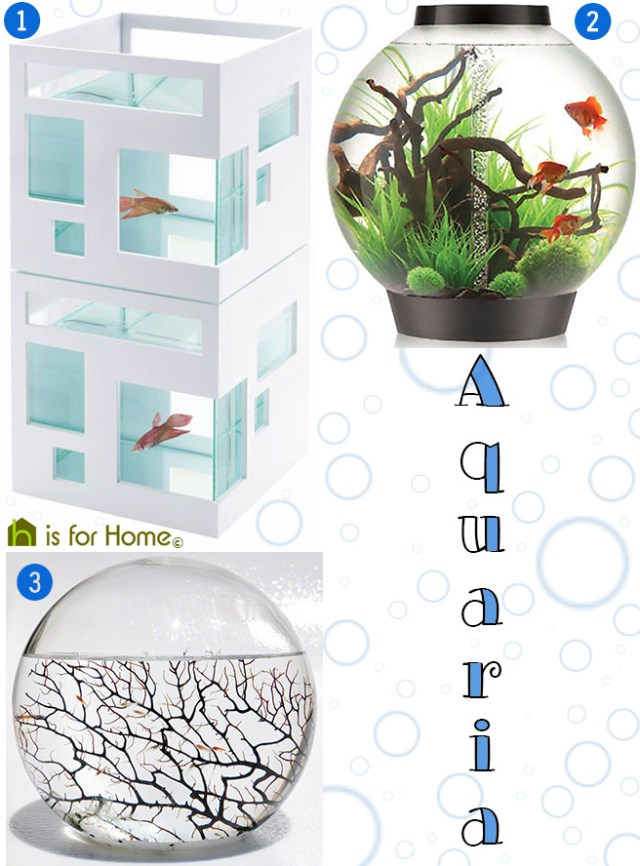 Selection of aquaria | H is for Home