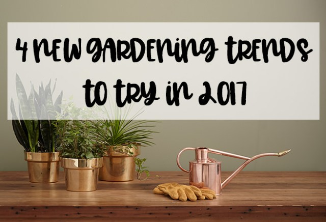 4 new gardening trends to try in 2017
