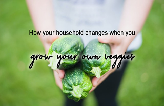 How your household changes when you grow your own veggies