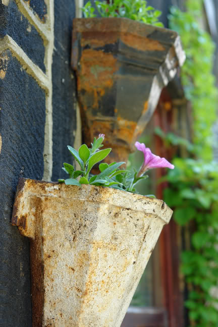 old cast iron hoppers being used as plant pots | H is for Home