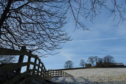Snowy Pennine scene with blue sky, bare tree branches in the foreground & trees & farm outbuildings in the background