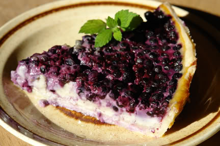 Slice of bilberry flan with sprig of mint | H is for Home