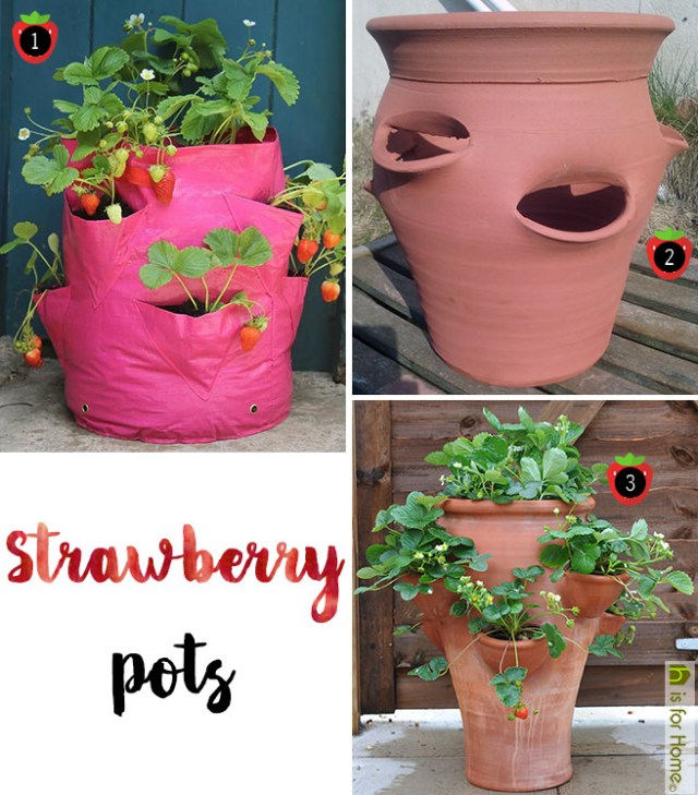 Strawberry pots | H is for Home
