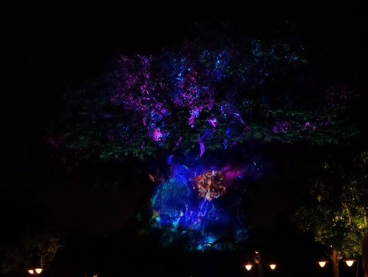 Tree of Life o arbol de la vida en Disney's Animal Kingdom