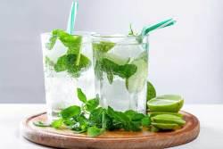 Mojito Cubano Cocktail