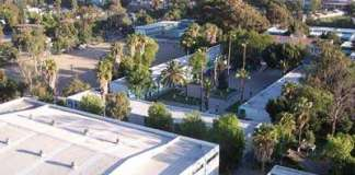 Tijuana blues: betty y el mastodonte