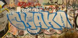 Chaka: vandalism and the art of graffiti