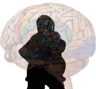 La obesidad es también culpa del cerebro