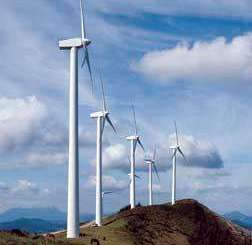 Tijuana blues: molinos de viento