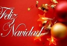 Navidad y fin de año: regalo para vivir