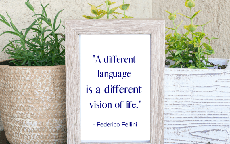 quotes about bilingualism
