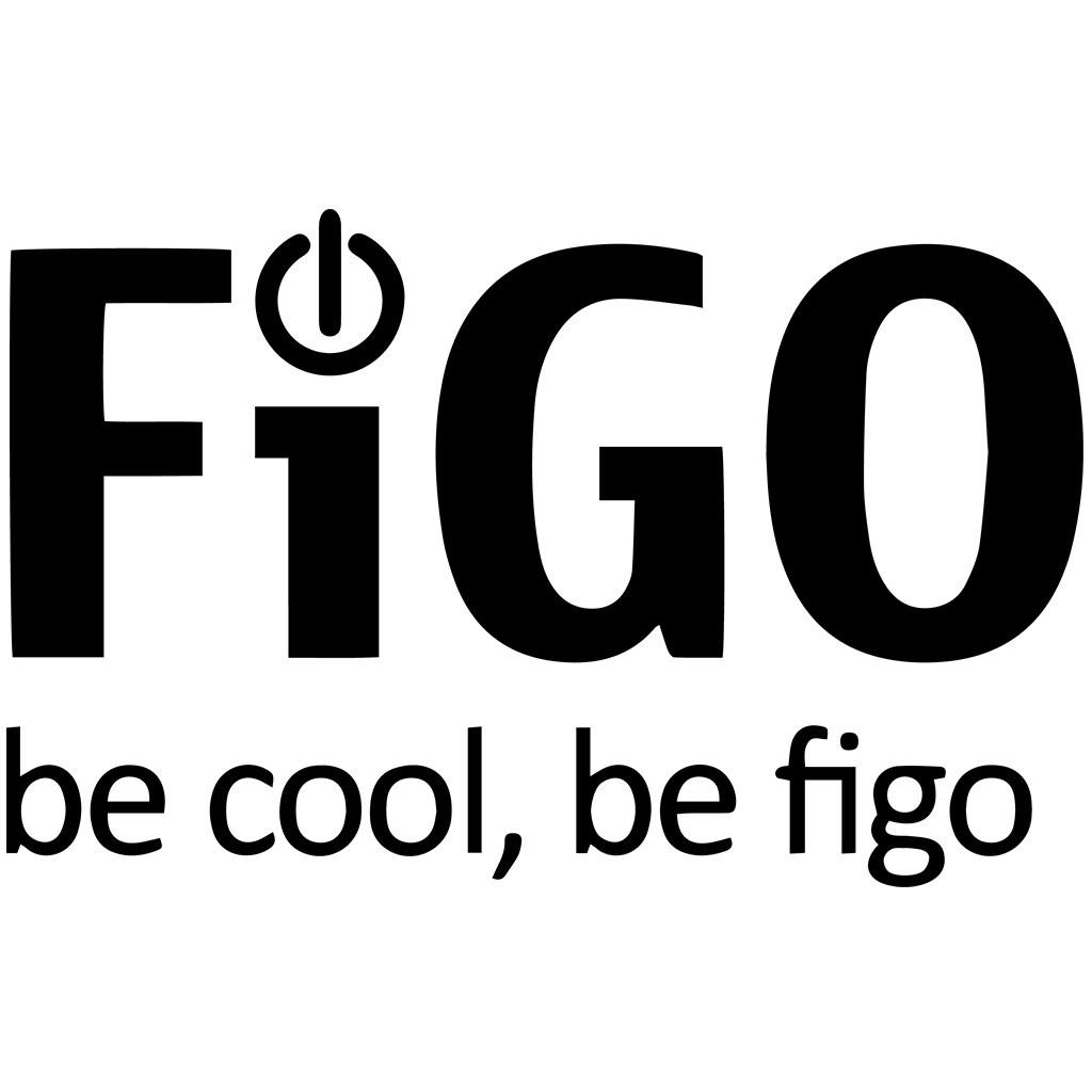 The New Figo Gravity Quality Made Affordable