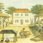 The Long Song, une mini-série sur la fin de l'esclavage en Jamaïque
