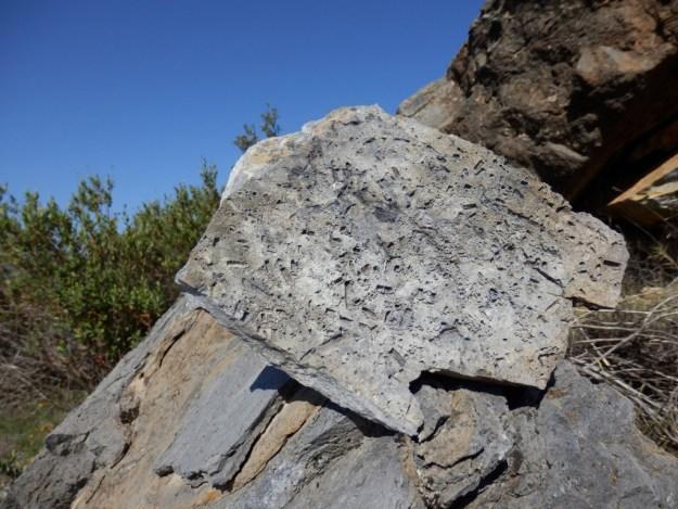 Aspect extérieur en loges évidées. Vallée de La Désix à Sournia, faille nord pyrénéenne.