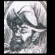Biografía de Pánfilo de Narváez