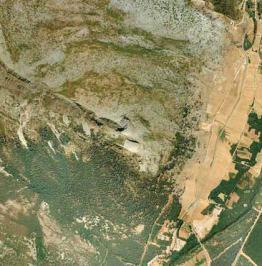 Tomo+II.+Futuro+de+los+bosques+y+Mapa+Forestal+_Página_104_Imagen_0001