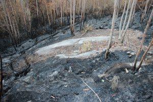 Petróglifos da Pedra da Loba, en Villestro, Santiago, afectados polo lume / A Rula