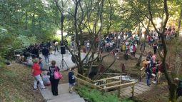 festa no bosque que antecede o castro no Castro Animado / foto HdG