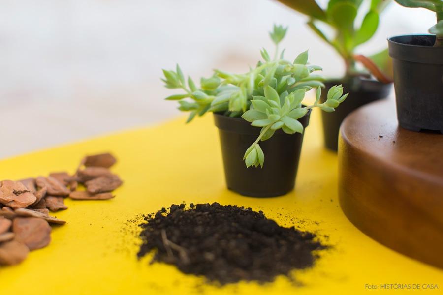 04-decoracao-arranjo-suculentas-plantas
